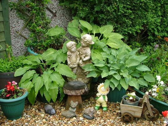 Shady corner of garden