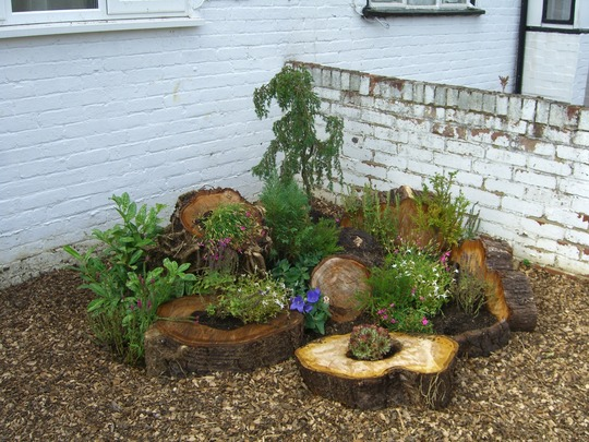 My first loggery and pucker patch grows on you - Garden log decorations ...