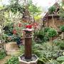 My_garden_2011_100
