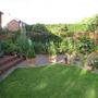 garden mid june 2011 012