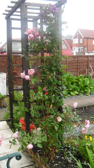 SAM 0447 Front garden arch
