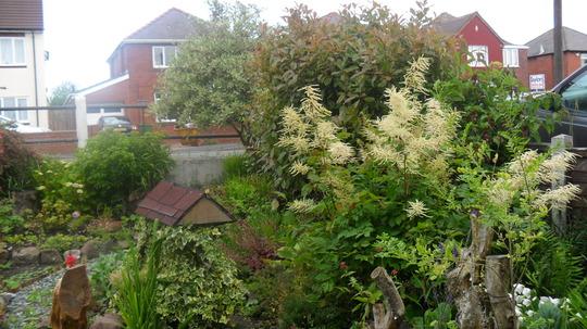 SAM 0448 Front Garden