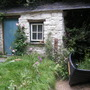 A postcard from Wales garden...Chelsea 2011