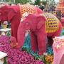 Thailand floral elephants..
