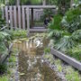 Malaysian jungle streams...Chelsea flower show 2011