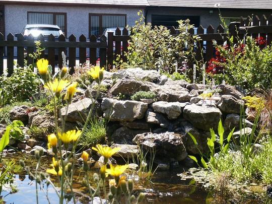 Pond with rockery
