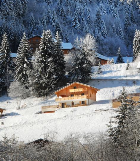 Winter ex 2