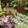 My_garden_2011_257
