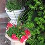 Front pots