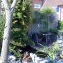 Parts of my garden