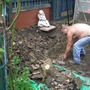 digging out out hole for pond