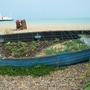 Boat bed starter
