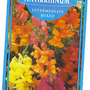 Antirrhinum HHA sown 13 7 2011 (Antirrhum)