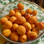 From my 2 yrs old Apricot tree