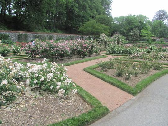 Biltmore Gardens,Ashville,NC          us