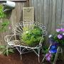 Garden_2011_202