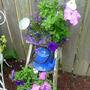 Garden_2011_203