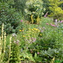 Moorfield Garden Endon Stoke on Trent Staffs