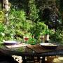 23.7.11_024_garden_supper_lp
