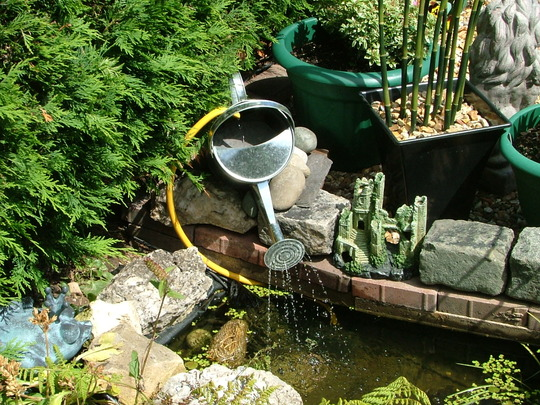 Watering can feature.