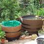 garden pond 2011 07 28 002