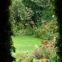 Through the door way