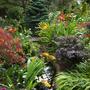Lower garden stream