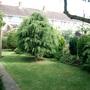 half of top back garden