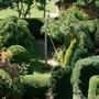 view of top back garden from bedroom window!