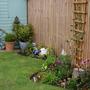Garden_2011_009