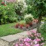 Garden 16th August 006