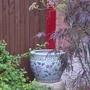 DSC01774 Chinese Pot