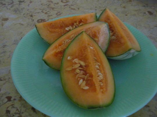 Charantais Melon....