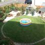 Garden Aug 11 007