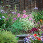 0522_garden_in_the_rain_20_aug_11