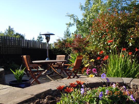 DSCN3037 garden in mid summer