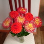 Glorious dahlias!!