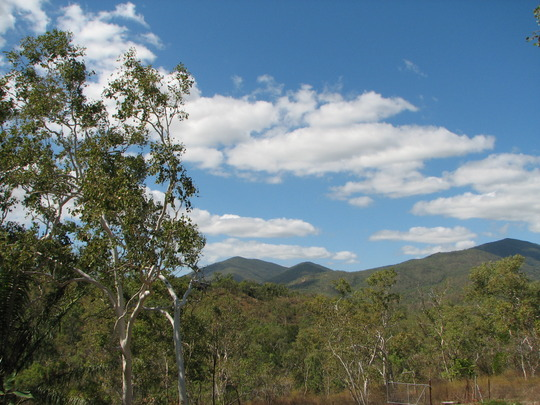 Early Spring in N.E. Downunder - Looking over the bush in the 'dry' season