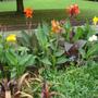 Horniman Gardens 2010
