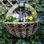 My New Wall Basket