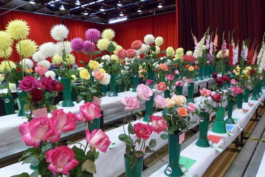 seaburn horticulture show sunderland