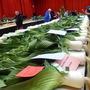 giant leeks seaburn horticulture show sunderland