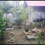 My Chaotic Garden