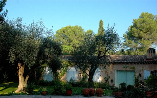 Un autre point de vue de notre jardin One other point of view from our garden