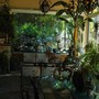 Vue partielle de notre véranda - Partial view from our veranda