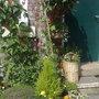 Garden2_084