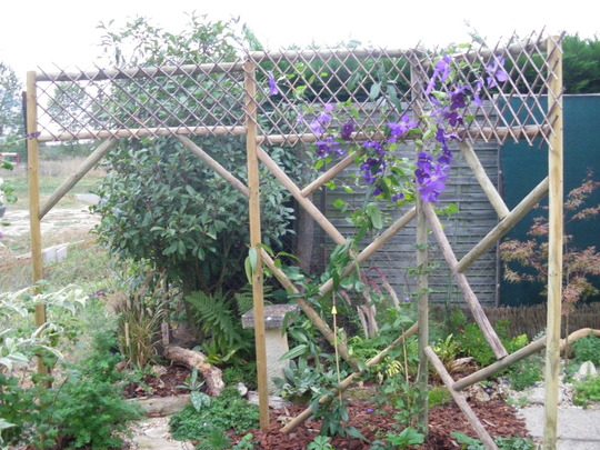 Rustic Climbing Frame.....Completed