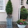 Winter_plantings_at_front_of_house