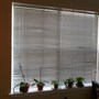 The best feature of my new apartment - this window, and the ledge for my orchids and african violets.