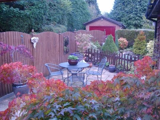 DSC02392 640x480 Autumn patio.